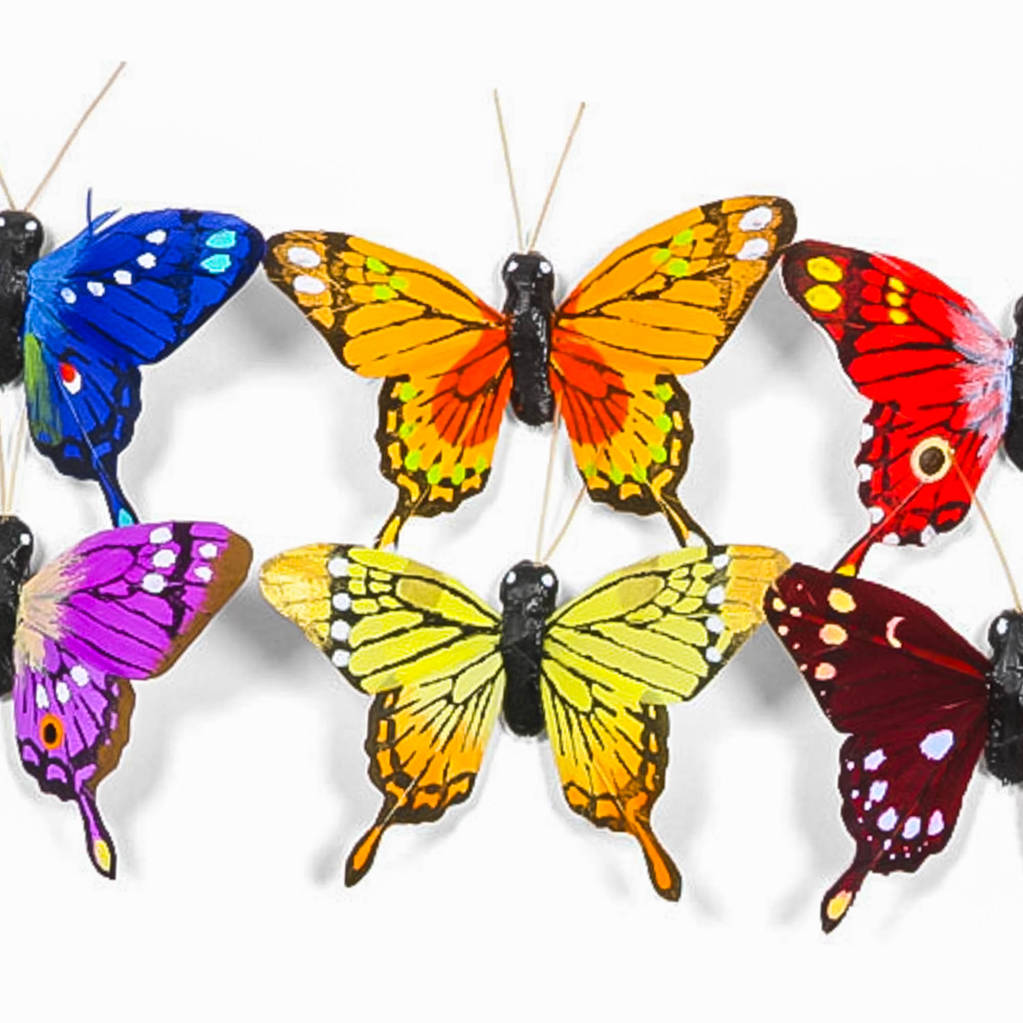 Butterfly w/Pick