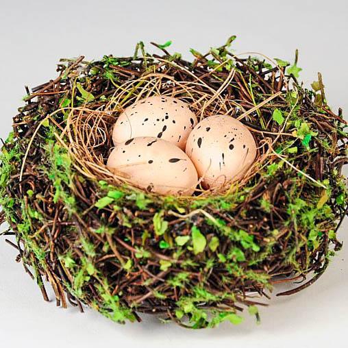 Nests w/Eggs