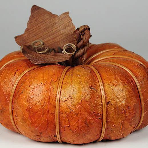 Pumpkins & Acorns