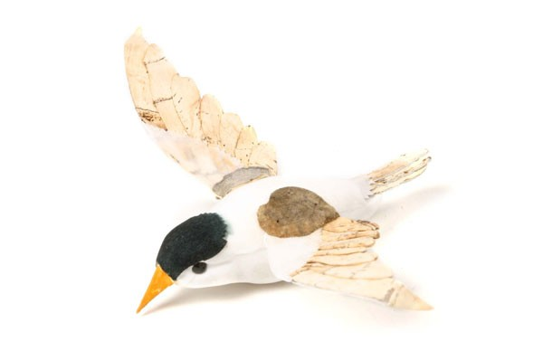 "Bird Tern 3.5"""