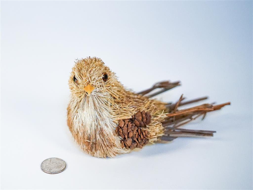 "Bird Nat. Grass/Cone/Twig 4"""