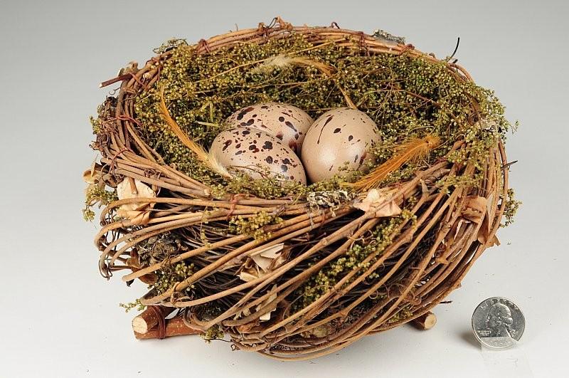 "Nest Fancy Nat. Twig/Moss/Brn Egg 7"""