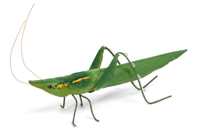 """Grasshopper 4"""""""