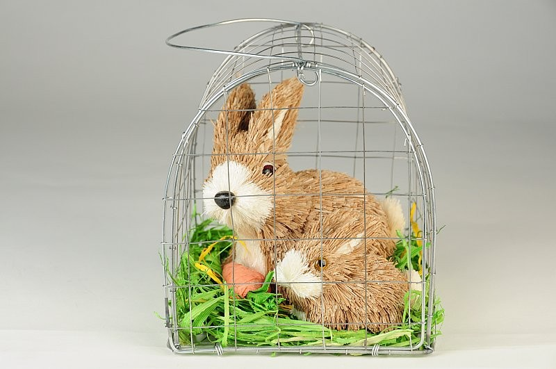 Rabbit Nat. Jute w/Baby in Cage 5.50""