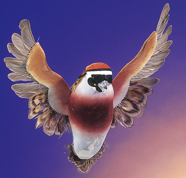 "Bird Quail Blue Flying 5"""