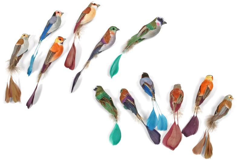 """Bird Racquet-Tail Asst Body 2.5"""" Tail 3"""""""