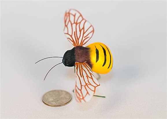 """Bee Bumble Blk/Ylw 1.75"""""""
