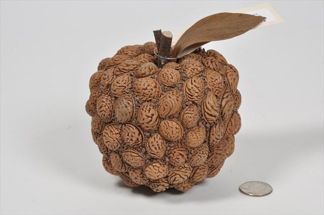 """Apple Brown Nutshell 4.5"""""""