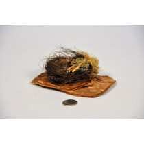 Nest Brown Twig/Moss on Wood 5.5""