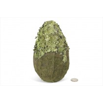 Ball Green Bark/Lichen Oval 8""