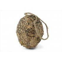 Ball Egg Shaped Nat. Lichen/Moss 5""