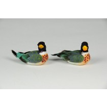 Duck Mullard Navy/Grn Asst*2