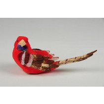 Parakeet Red