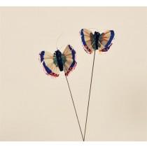 "Butterfly Blue/Pnk/Org 1.5"""