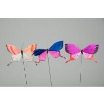 """Butterfly Pnk/Blu/Org/Wht Asst 4"""""""