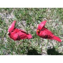 "Cardinal Jute Red w/6"" Wire Pick 4"""