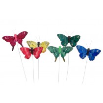 Butterfly Multi-Color Asst*6 2.5""