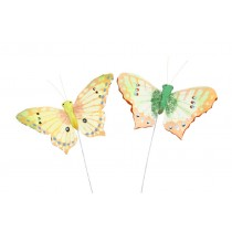 Butterfly Lte Green/Yellow Asst*2 2.5""