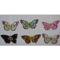 "Butterfly Glit/Crystal Asst*6 2.5"""
