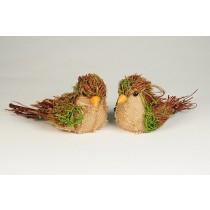 """Bird Moss/Burlap Asst*2 5.5"""""""
