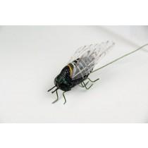 "Cicada Black 1.5"""