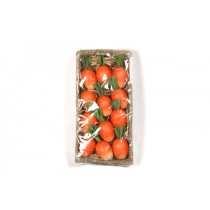 "Carrot Fat Glossy 1.5"""