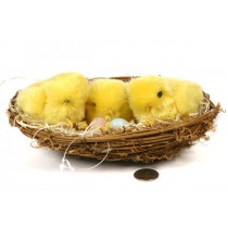 Chick Yellow Fur Three in Nest 8""