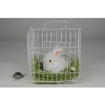 """Rabbit Fuzzy White in Cage 5""""x6"""""""