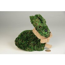 "Rabbit Green Grass Sitting 6"""