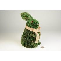 "Rabbit Green Grass Lying Standing 9"""