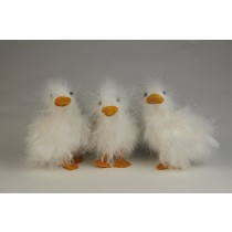 Duck Fuzzy White Asst*3 4""