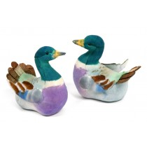 Duck Mallard Grn/Purple Asst*2 3""