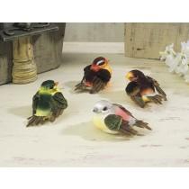 """Bird Asst 2.5"""""""