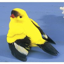 Bird Finch Yellow 4""