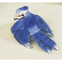 Bird Blue Jay 3""