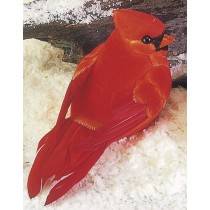 """Cardinal Red Fat 4"""""""