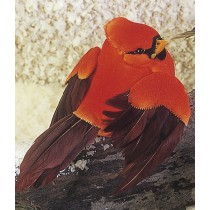 Cardinal Red Flying 4""