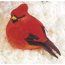 """Cardinal Red 6"""""""