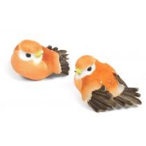 "Bird Peach 2.5"""