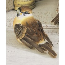 Bird Sparrow w/Stripe 3""