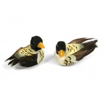 Duck Mallard Blk/Yel Mini 1""