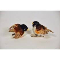 """Bird Chikadee Blk Head w/Clip 3"""""""