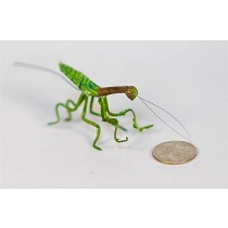 Praying Mantis Green 2""
