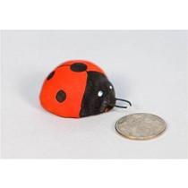 """Lady Bug 1.5"""""""