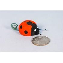 """Lady Bug 1"""""""