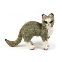 Cat Green Grass Standing 9""