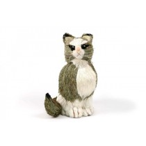 Cat Green Grass Sitting 9""