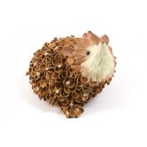 """Hedgehog Nat. Nut Shell w/Twig 6"""""""