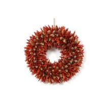 Chili Pepper Wreath w/Willow Bud 10""