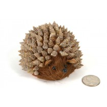 Hedgehog Nat. Sea Shell Back 4""